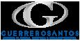 Dr. Fernando Guerrerosantos Logo